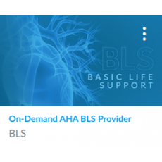 On-Demand AHA BLS Course